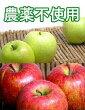 【A級品】竹嶋さんの自然農法林檎富士+王林ミックス<5kg>※無袋栽培