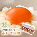 九州産赤玉「太陽卵(10個入り1パック)」送料別 家庭用 小分け 朝採れ 新鮮 お試し 栄養豊富 無添加 おいしい卵 こだわり卵 ついで買い ワンコイン・・・