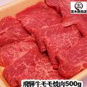 無添加!牧草牛ハンバーグ1Kgグラスフェッドビーフ オメガ3脂肪酸 アミノ酸 糖質制限 腸活 成長ホルモン不使用 キャンプ アウトドア