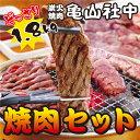 亀山社中 どっさり 焼肉セット(華咲きハラミ・やわらかカルビ...