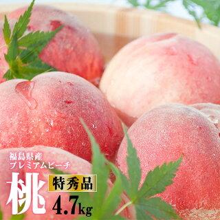 プレミアムピーチ福島特秀桃5kg箱(15〜20玉)