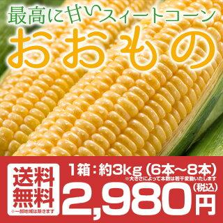 送料無料福島県産トウモロコシおおもの6〜8本約3kgスイートコーン