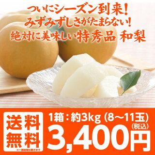 ついにシーズン到来!みずみずしさが堪らない!和梨の代表格「豊水」