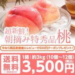 【送料無料】特秀品桃3kg!山形県産桃/新鮮な桃を朝摘みで産地直送します♪/あかつき/川中島/伊達の桃(約3kg約8個〜12個)