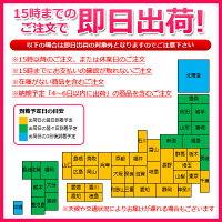 潤滑ゼリーウェットトラストプロ120本セット無味無香料│女性用Pro120本入り5000円以上送料無料