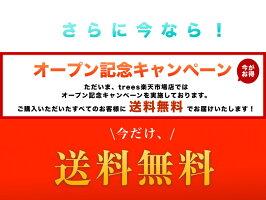 燻製器スモーキングガン簡単スモーク風味冷燻薫製縦型コンパクトスモーカー燻製機<日本正規保証>BKLNDINER®