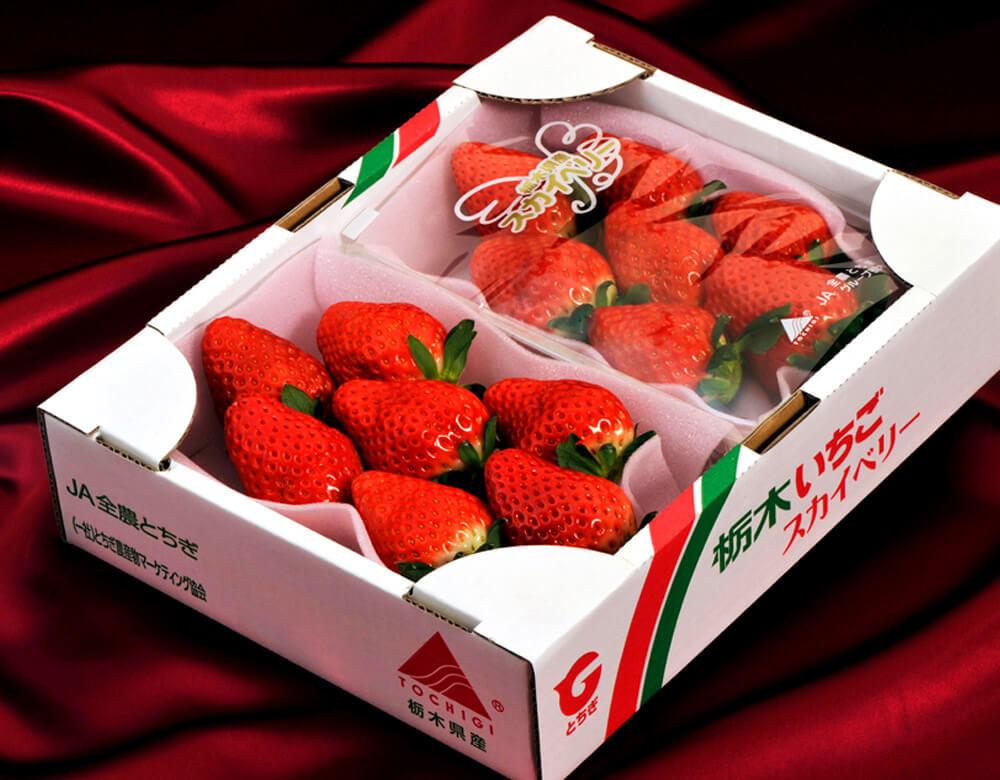 いちご 栃木県産 「スカイベリー」 1箱 約600g <約300g(5〜15粒)×2パック>