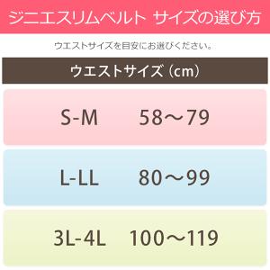 サイズの選び方