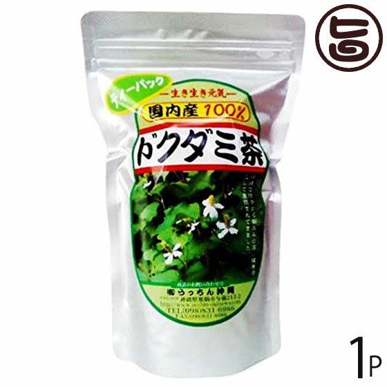うっちん茶 ドクダミ茶 ティーパック 3g×20包×1P 沖縄 人気 定番 土産 健康茶 女性におすすめのハーブティー 送料無料