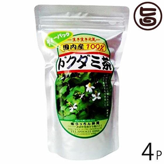 うっちん茶 ドクダミ茶 ティーパック 3g×20包×4P 沖縄 人気 定番 土産 健康茶 女性におすすめのハーブティー 送料無料