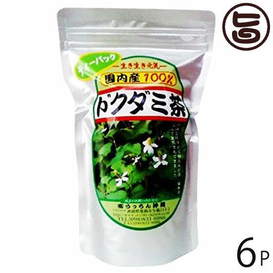 うっちん茶 ドクダミ茶 ティーパック 3g×20包×6P 沖縄 人気 定番 土産 健康茶 女性におすすめのハーブティー 送料無料