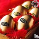 ギフト 烏骨鶏本舗 鳥骨鶏ゴールデンエッグ6個入り 岐阜県 土産 人気 条件付き送料無料