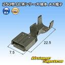 古河電工 250型 QLWシリーズ 防水 メス端子