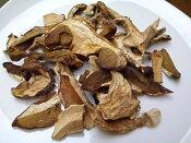 イタリア産乾燥ポルチー二茸(20g)
