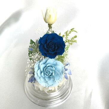 SL(スリムロング)サイズアクリルドームアレンジROSE mimi(ローズミミ)BLUE ブルー【RCP】[PW]