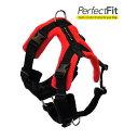 Dog Games パーフェクトフィットハーネス20mm Top Piece M ハーネス 犬 犬用 中型犬 胴輪 Perfect Fit Harness Made in UK. イギリス 犬用ハーネス <3点セット>