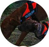 【2016-2017カラー】 ハーネス 中型犬 大型犬 犬 犬用 胴輪 IDCパワーハーネス Size0-1-2 胸囲58〜96cm Julius-K9 ユリウスケーナイン 犬用ハーネス [送料無料][お取り寄せ可能]