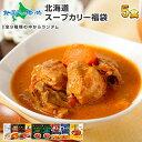 ランダム5食 北海道 スープカレー福袋 お楽しみ食べ比べ5食...