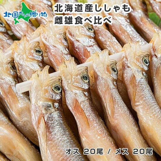 魚介類・水産加工品, シシャモ  40 seafood gift set