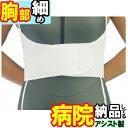 【送料無料 離島もOK】ライトバンド ハーフ 胸腹腰部兼用固定帯 アシスト 腰部胸部ベ……