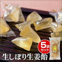 生しぼり生姜飴5袋セット食品菓子飴キャンディー生姜のど飴