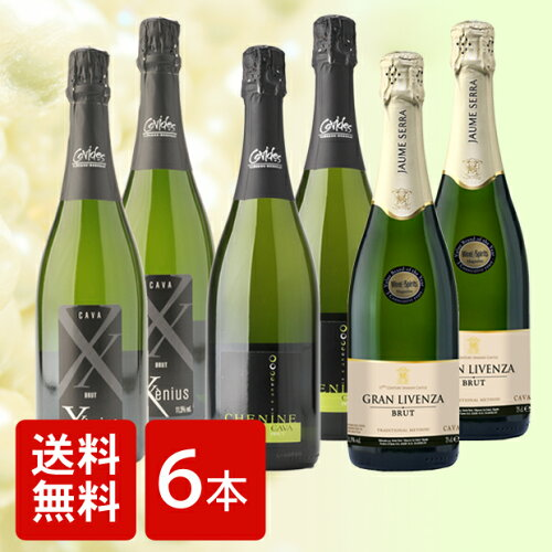 [ワイン6本セット][送料無料]ソムリエが選ぶ お薦め スパークリングワイン 3種6本セット スパーク...