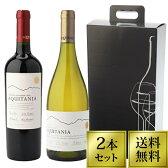 [送料無料 専用箱つき] ワインセット 赤ワイン 白ワイン 2本セット ワインギフト プレミアムチリワイン 紅白ワインセット [お中元] [中元] [贈答用] [贈り物] [ギフト]