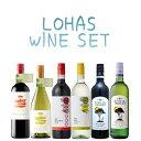 ロハスフェスタで大好評!ぜ〜んぶオーガニックワインの6本セット!! 赤ワイン(750ml)×3本、白ワイン(750ml)×3本