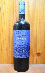 エヴォディア カラタユド アルトビヌム ボデガス アレハンドロ スペイン アラゴン 赤ワイン