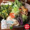 【送料無料】香川県産小麦使用 「細切り」 冷凍讃岐うどんと本造りだしの詰合せ[12人前]【MHRE-12S】