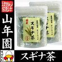 【国産 100%】スギナ茶 ティーパック 1.5g×20パッ...