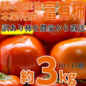 本巣郡の富有柿訳あり3.0kgを特別価格で♪大きさ(3L〜M)柿の名産地岐阜県の中でも最高級の旨さを誇る地区から直送します!