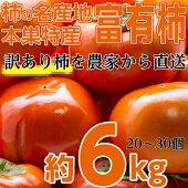 本巣郡の富有柿訳あり6.0kgを特別価格で♪大きさ(3L〜M)柿の名産地岐阜県の中でも最高級の旨さを誇る地区から直送します!