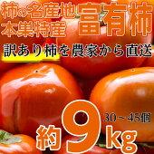 本巣郡の富有柿訳あり9.0kgを特別価格で♪大きさ(3L〜M)柿の名産地岐阜県の中でも最高級の旨さを誇る地区から直送します!