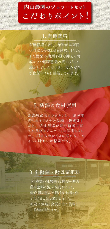 【低農薬・有機栽培】新潟県産食材を使用した内山農園のジェラートセット!6種類のフレーバーをお届け!いちご、お米、かぼちゃ、紫いも、あずき、枝豆のアイスオーガニックマクロビオティックプレゼント・贈答用にも最適【頑張って送料無料!】
