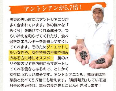 黒豆茶説明7