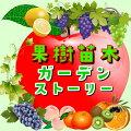 ぶどう農家おすすめのブドウの苗木販売店・専門店一覧【まとめ】 261