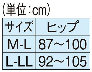 センター cm 文化 日本 日本文化センター・CLUB dx