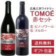 【送料無料】実力派TOMOE赤ワインセット/広島三次ワイナリー/一度は飲んでおきたい!赤ワイン2本です(赤:TOMOEメルロー、TOMOEピノノワール)