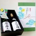 龍勢 硬派タイプ 純米酒セット 720ml×2本 夏ギフト ...