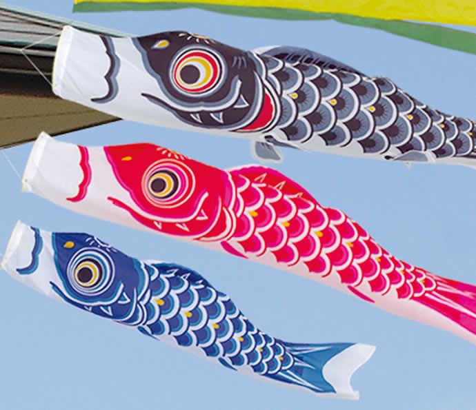 シルキー鯉 五色吹流し