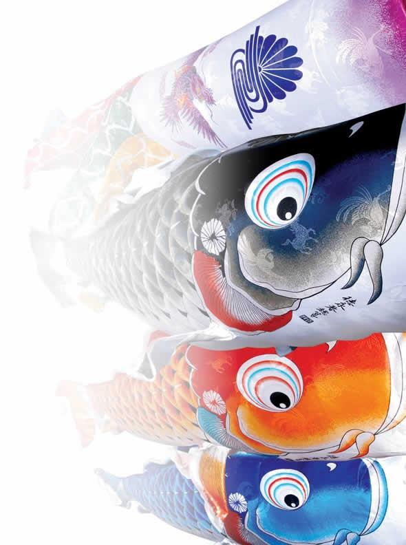 吉兆 慶祝の鯉 撥水加工 ポリエステルジャガード 紙製化粧箱 家紋・名入れ可能