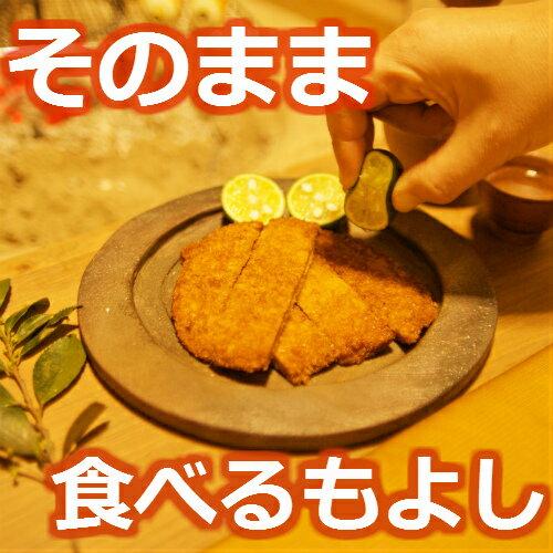 おつまみ フィッシュカツ 30枚 お買い得セット徳島県 小松島 の ソウルフード ピリ辛 カレー風味 で お子様 にも 人気ギフト!