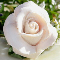 【 -White rose- 美しい白薔薇 】Antonio Guarracino作 ホワイト カメオK18WGペンダント ブロ...