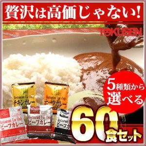 レストランユースオンリーカレー 5種類から選べる60食セット(10食×6種類)【レトルトカレー/ビ...