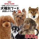 【最大71%オフ!SPRINGセール開催中】【あす楽】ロイヤルカナン 犬種別シリ
