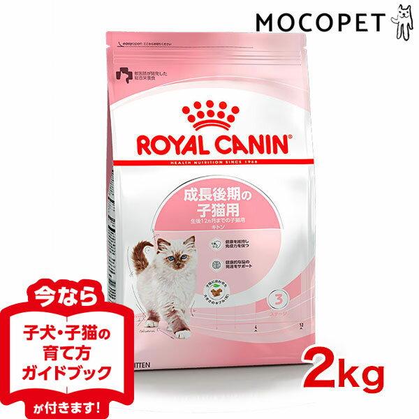 キャットフード・サプリメント, キャットフード 80SALE 12 2kg cat ROYAL CANIN FHN 3182550702423 w-105158 KN20160301RCDRY