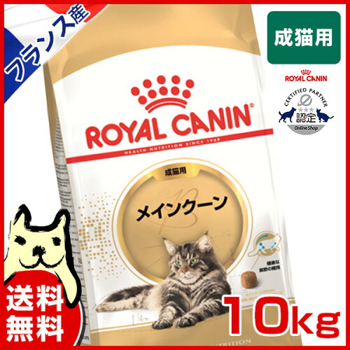ロイヤルカナン メインクーン 10kg / 成猫用 15ヵ月齢〜12歳まで 安心の正規品 /猫 [ROYAL CANIN F...
