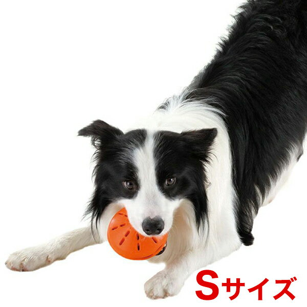 PetSafe (ペットセーフ)『Busy Buddy Twist 'n Treat』