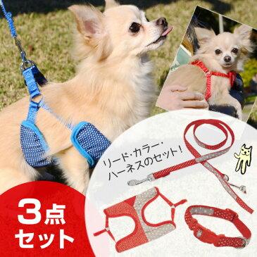 【あす楽】【破格】【3点セット】[アドメイト]Add.Mate ツートンドットカラー 首輪/ハーネス/リード 小型犬用 #w-138953